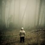 Alexander Shahmiri Photography
