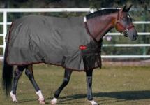 All Big D Horse Blankets